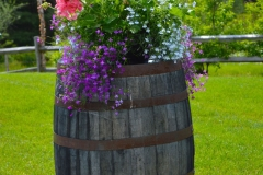 container-on-barrel