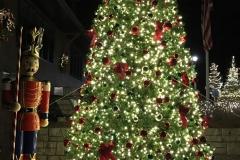 christmas-tree-crucon