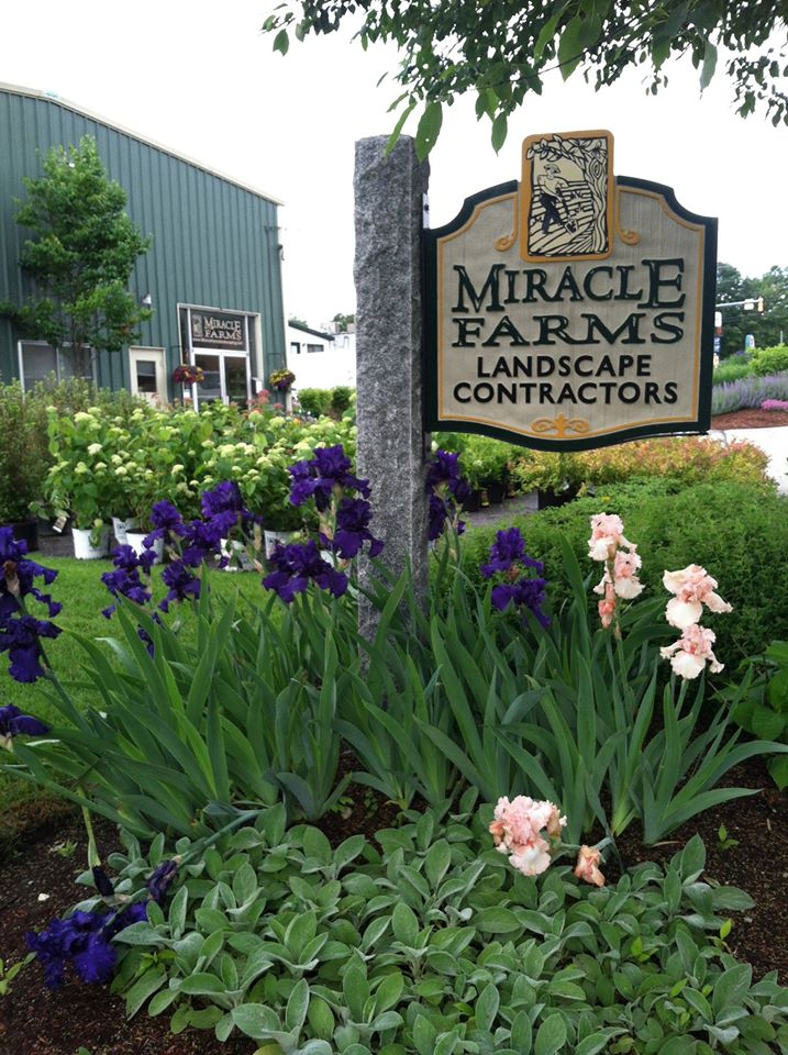 Miracle farms landscape contractor nh landscaping for Landscaping companies