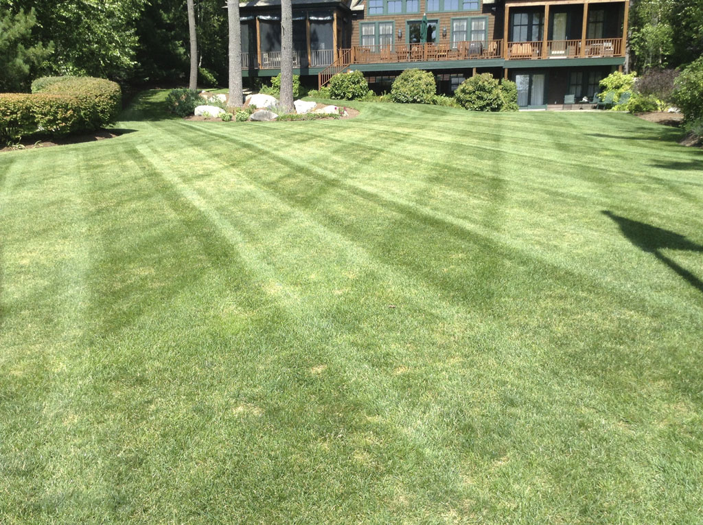 lawn maintenance moultonborough nh